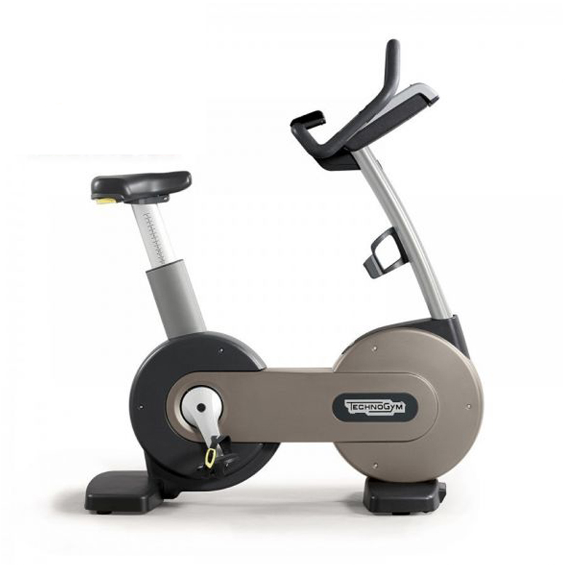 TECHNOGYM UPRIGHTBIKE